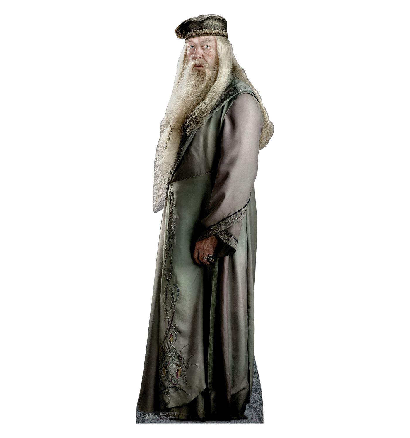 Professor Dumbledore Cardboard Cutout 886 Dumbledore Costume Harry Potter Professors Dumbledore