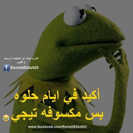 Desertrose أكيييييد Funny Study Quotes Funny Joke Quote Funny Arabic Quotes
