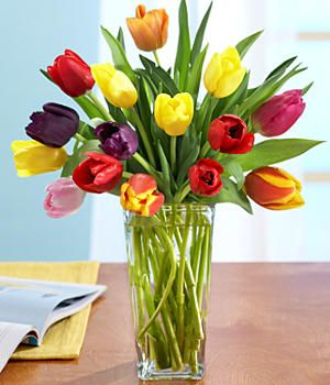 Multi Colored Tulips And Other Flowers Plants At Proflowers Com With Images Beautiful Flower Arrangements Tulips Flowers Beautiful Flowers