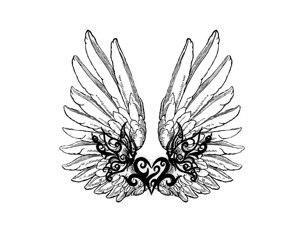 Wing tattoo design - Free Designs Design Of Heart Tattoo Wallpaper Picture 8259