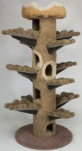 Tower Shaped Like A Tree For Cool Cats