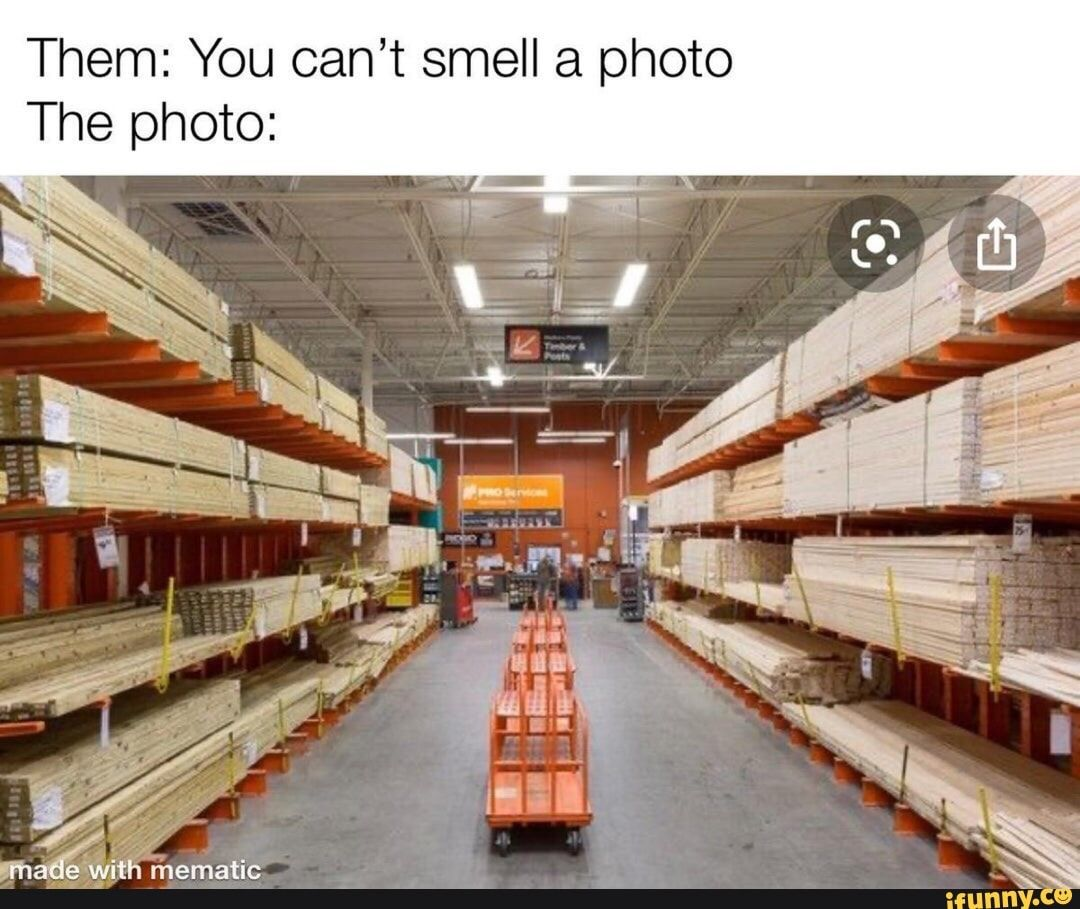 Girl Who Cant Smell Memes Memes Make Me Laugh I Laughed