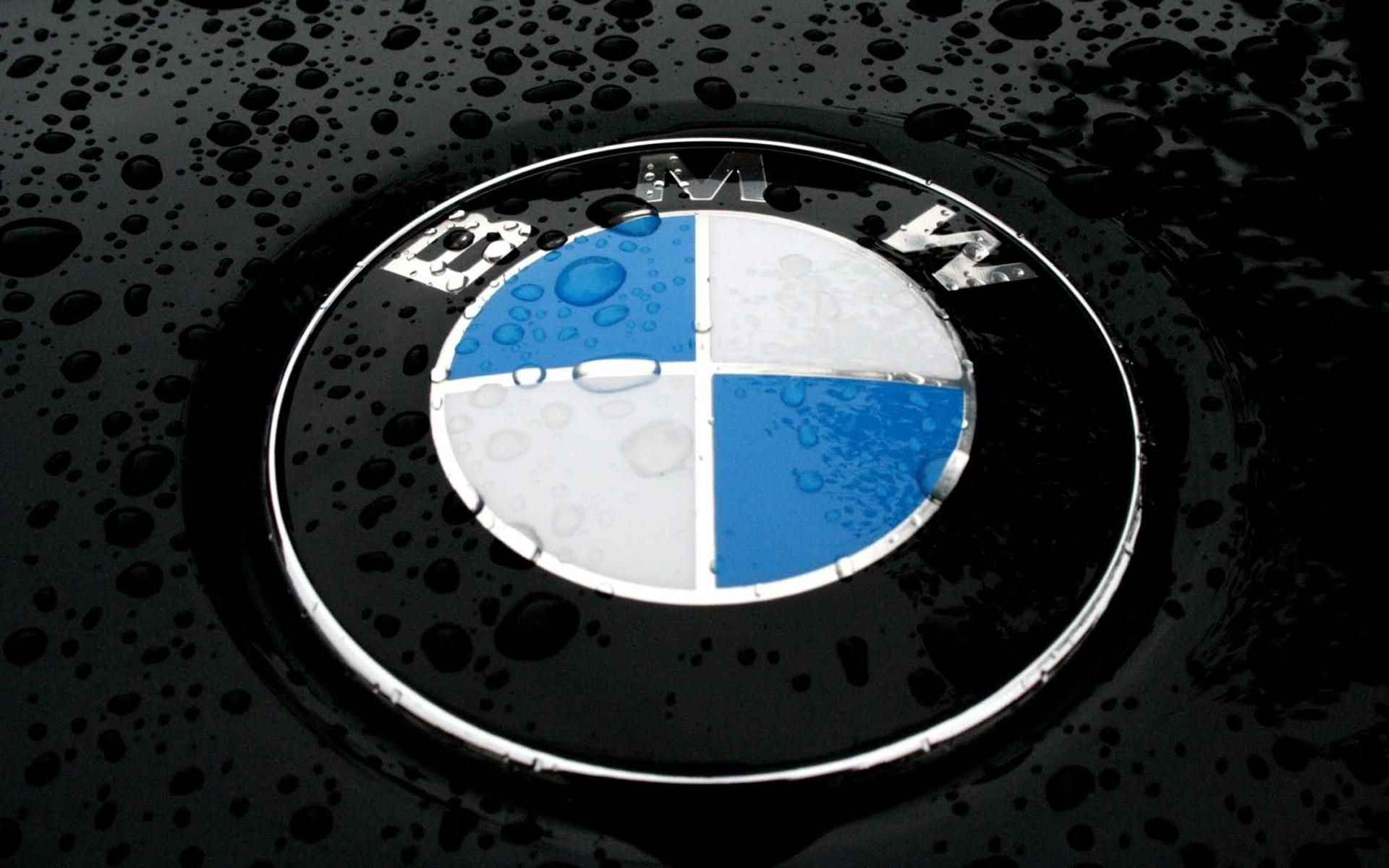bmw m logo wallpapers wallpaper cave all wallpapers pinterest wallpaper