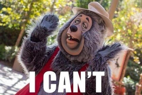 country bears can't even