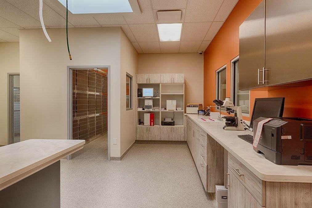 Coyne Veterinary Center Crown Point IN Hospital design