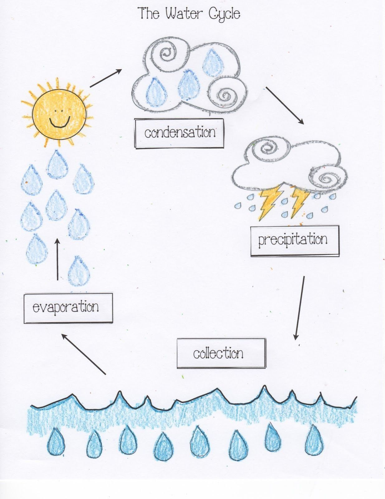Water Cycle Worksheet Kindergarten Samp 1 Water Cycle