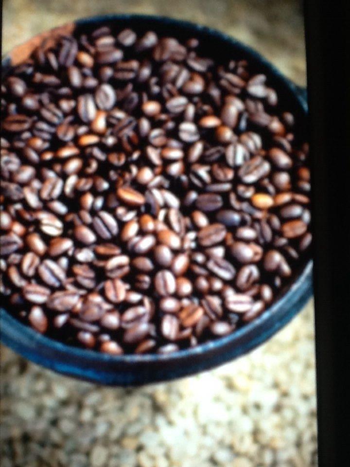 ethiopian coffee beans wholesale