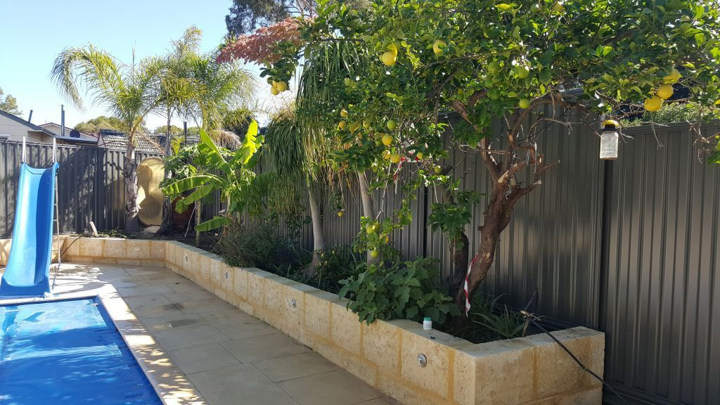 Colorbond fencing victoria park perth fence co fence