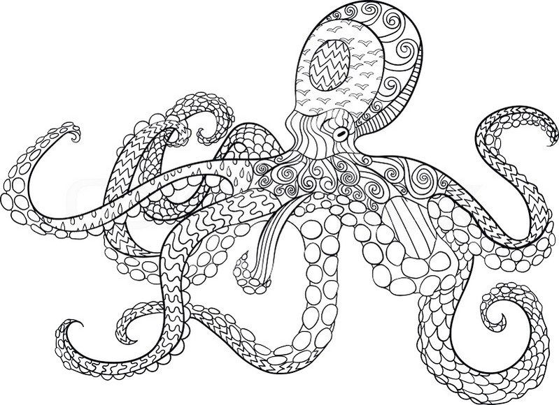 Zentangle Octopus Drawing Octopus Coloring Page Mandala