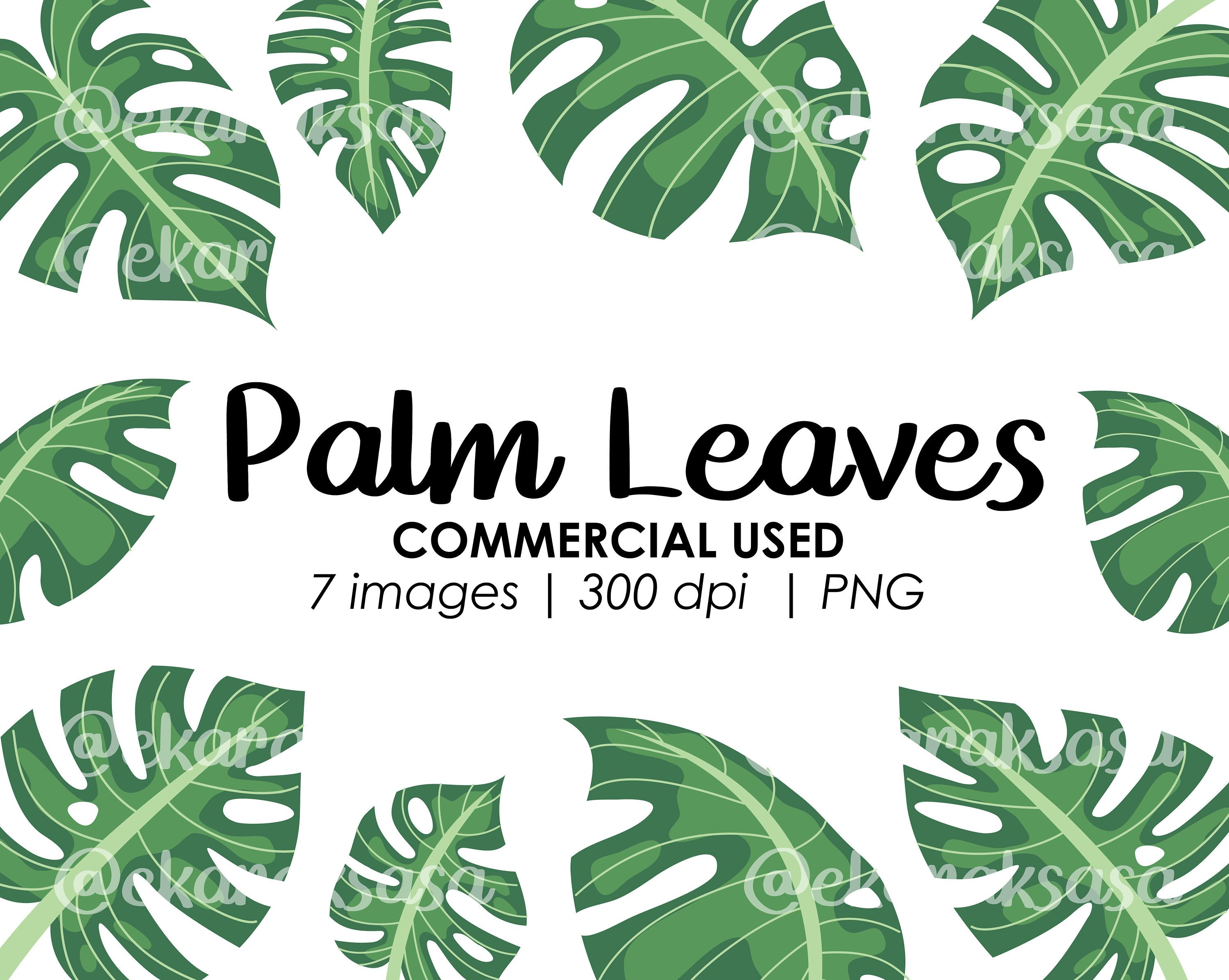 Palm Leaves Clipart Jungle Leaves Png Plant Illustration Etsy Plant Illustration Leaf Clipart Clip Art