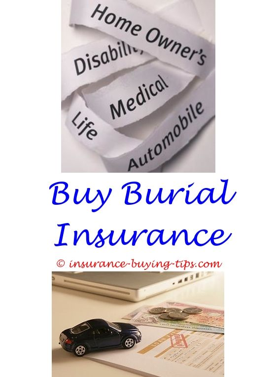 The General Insurance Quote Get A Auto Insurance Quote  Car Insurance And General Liability