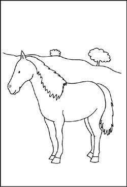 malvorlage - pferd auf der weide   ausmalbilder pferde, malvorlagen pferde, ausmalen