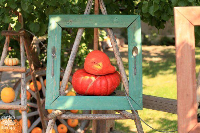 red-kuri-squash-quirky-fall-decorating-with-pumpkins