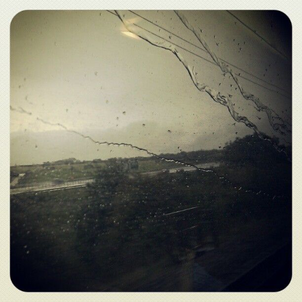 (T)rain by Zygote Gifts