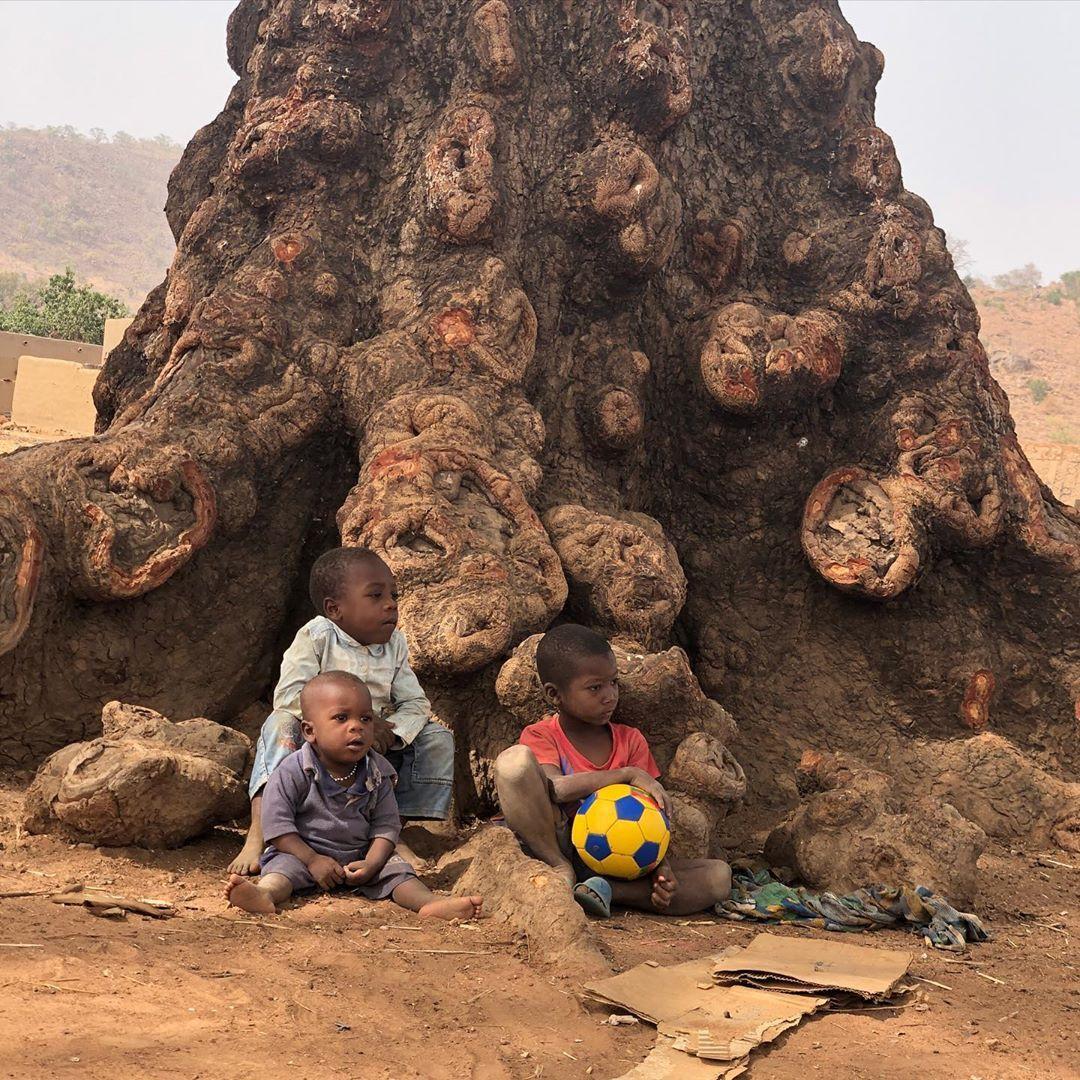westafrikanischer staat