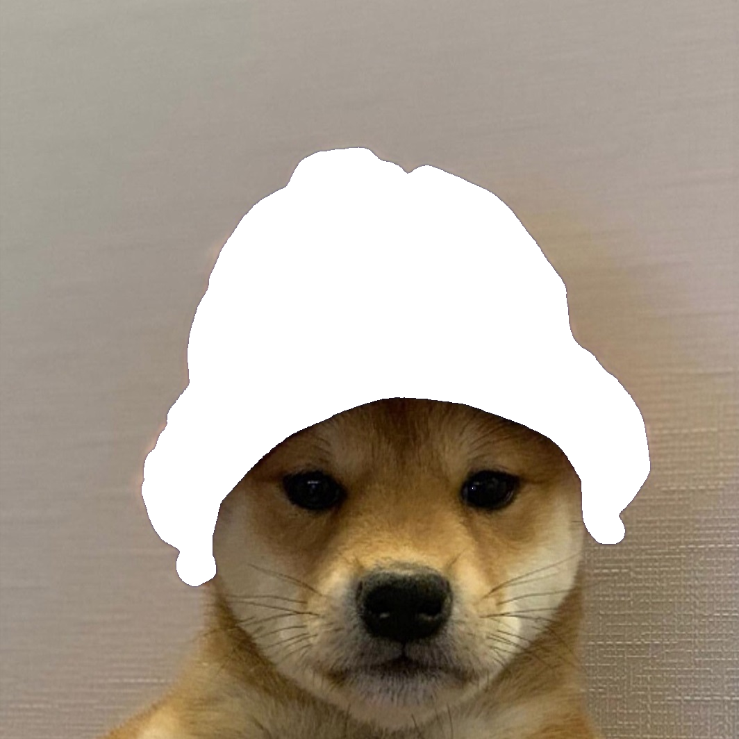Dogwifhat Template (Transparent PNG) Dogwifhat in 2020
