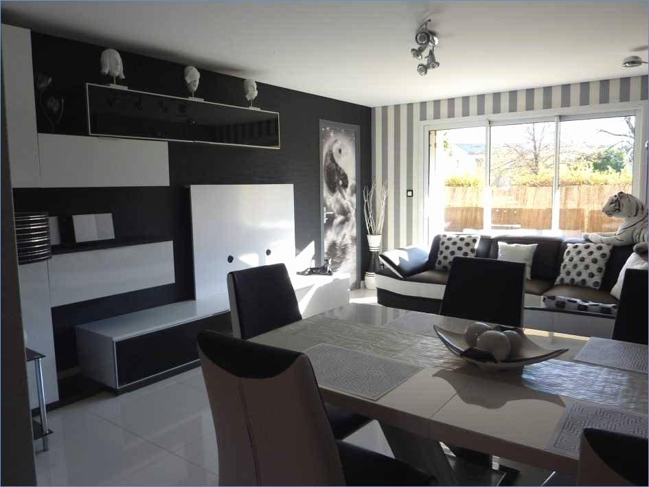 27 Meilleur De Idee Deco Salon 20m2 Pour Idee Deco Cuisine Ouverte Furniture Home Decor Home