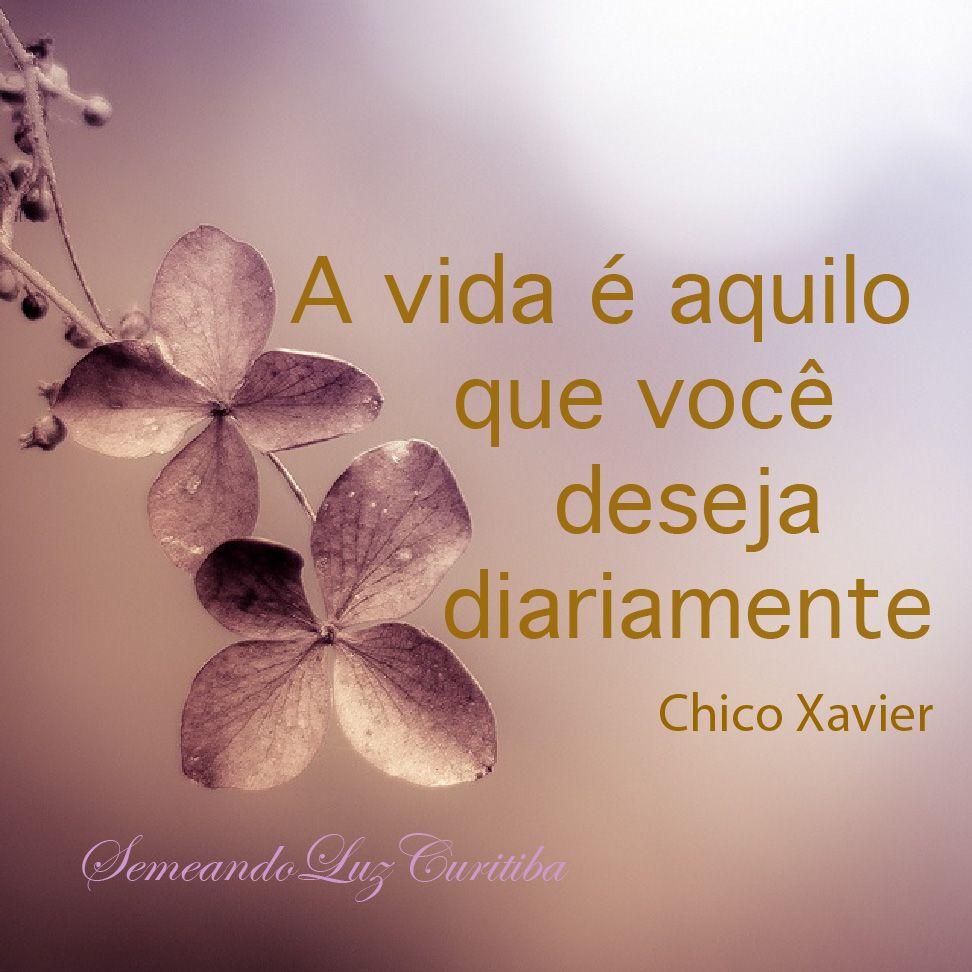 Chico Xavier Cardec Chico Xavier Inspirational Thoughts E Chico