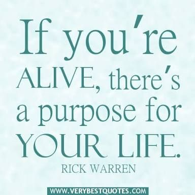 Purpose Quotes Magnificent Image Result For Quotes About Purpose  Olw Purpose  Pinterest .