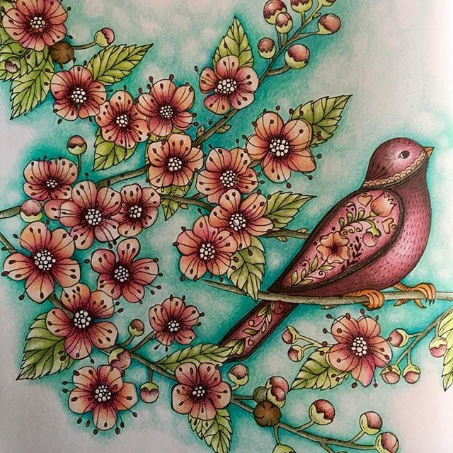 Springtimecoloralong Ritaberman Meinfruhlingsspaziergang Adultcoloringbook Adultcolouring Adultcoloring Springcoloring Springcoloringbook Coloring