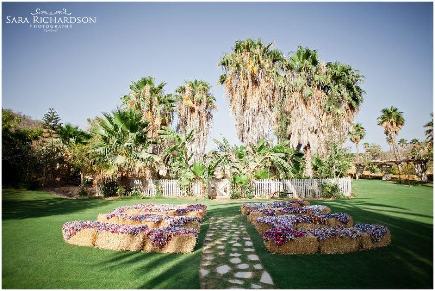 Wedding At Flora Farm Los Cabos México