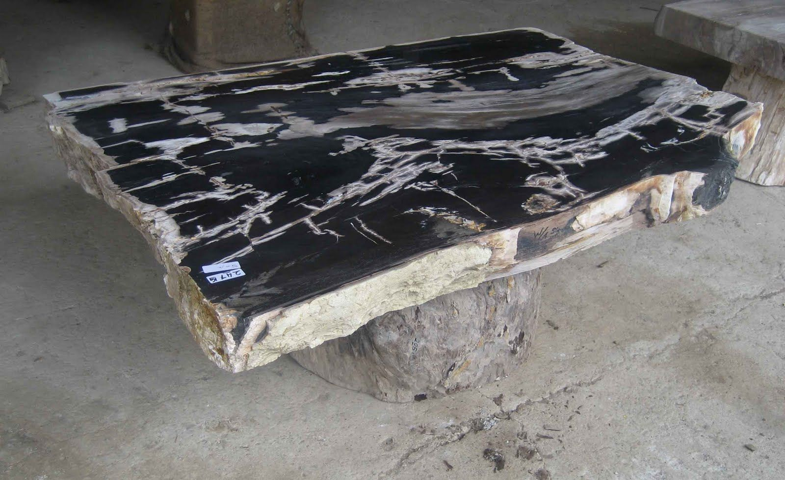 Charmant PETRIFIED WOOD TABLE TOP