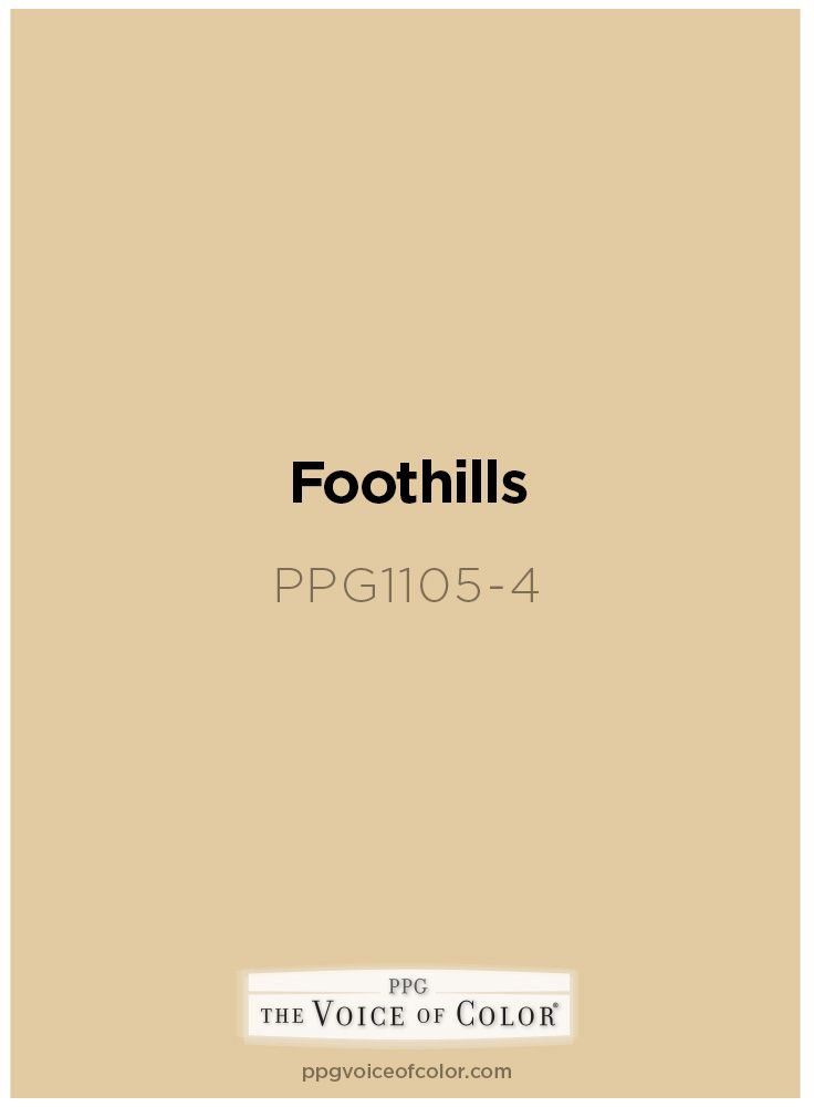Beige Paint Color Foothills PPG1105 4 By PPG Voice Of