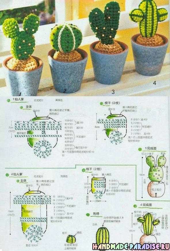 Cactus di fioritura a maglia. schemi | Amigurumis | Pinterest ...