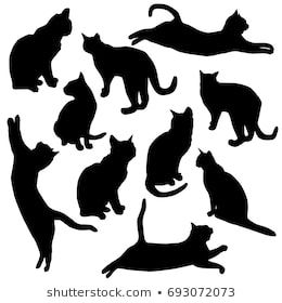 silhouettecatblack stock vectors images  vector art