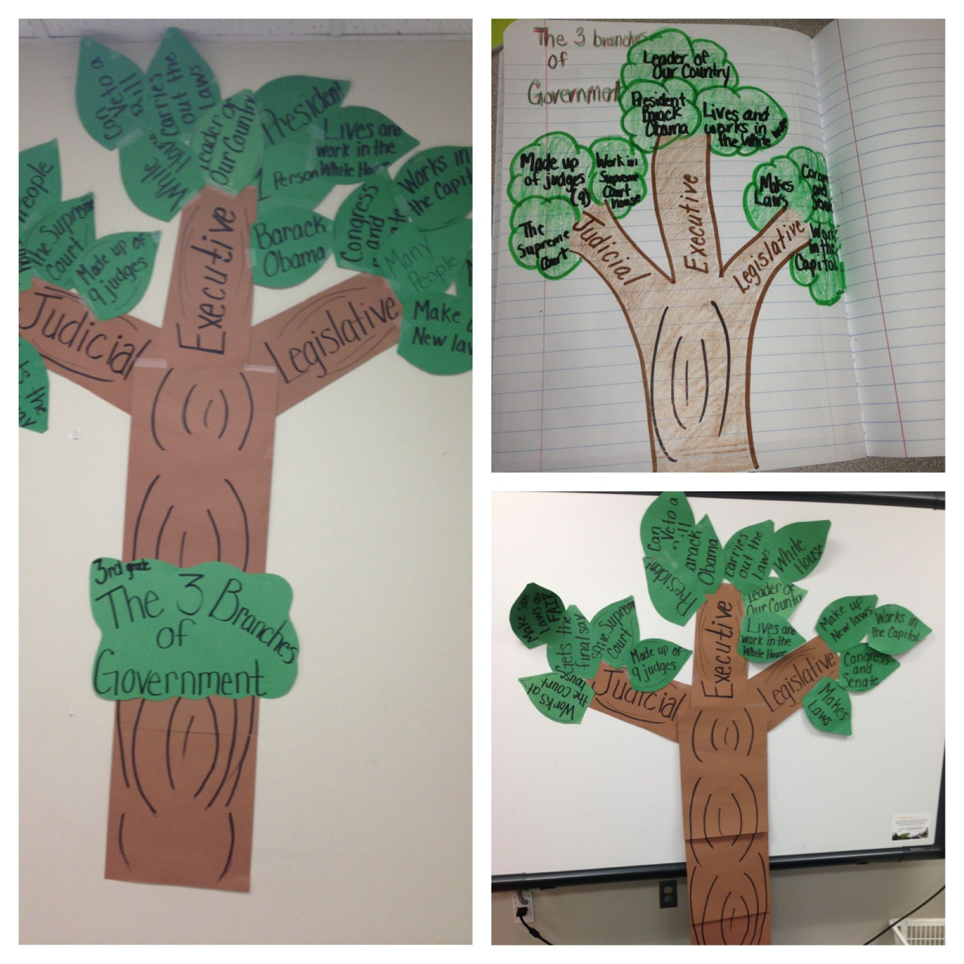 3 Branches Of Government 3rd Grade
