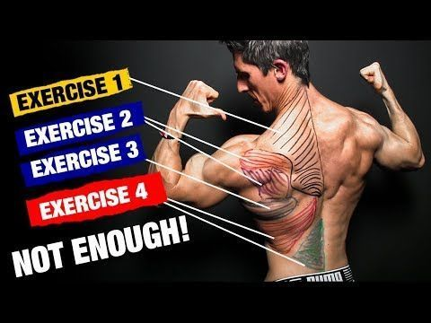 Back workout, Lat workout, Strength workout, Traps workout, Bodyweight workout, Back workout for mass - The PERFECT Back Workout (Sets and Reps Included) -  #Backworkout #trapsworkout Back workout, Lat workout, Strength workout, Traps workout, Bodyweight workout, Back workout for mass - The PERFECT Back Workout (Sets and Reps Included) -  #Backworkout #trapsworkout