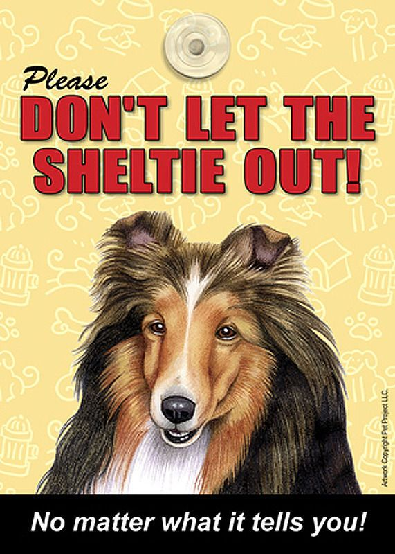 Out Sign Suction Cup 7x5 Sheltie Don/'t Let the Breed