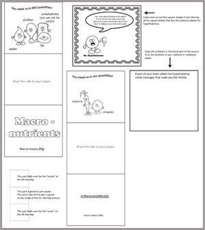 Guesthollow Com Homeschool Curriculum Printables Resources Homeschool Curriculum Homeschool Nutrition Recipes