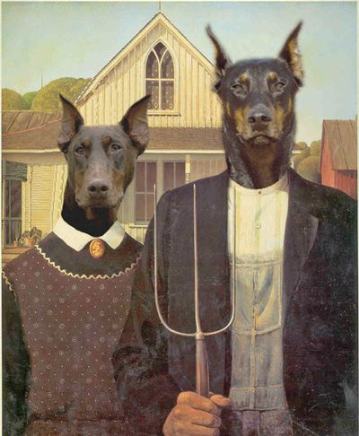 American Gothic Doberman Art American Doberman American Gothic
