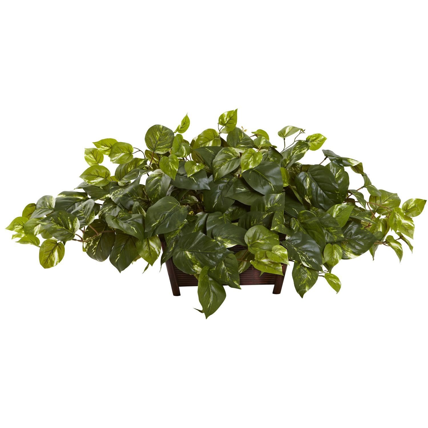 Pothos wrectangle decorative planter if you are looking for