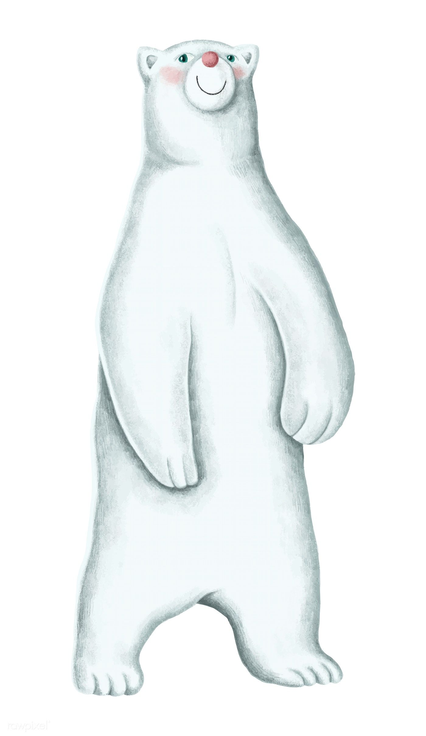 Hand Drawn Standing White Polar Bear Free Image By