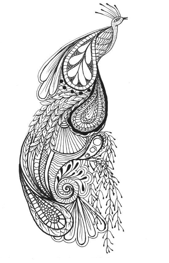 Pin By La Al On Peacocks