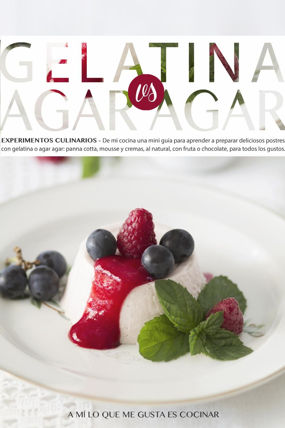 Gelatina Vs Agar agar Libro de recetas sobre gelatina y agar agar de http://amiloquemegustaescocinar.com