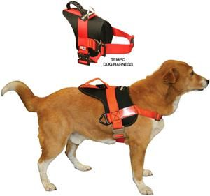 Fusion Pets Raider Dog Training Harness Dog Training Harness