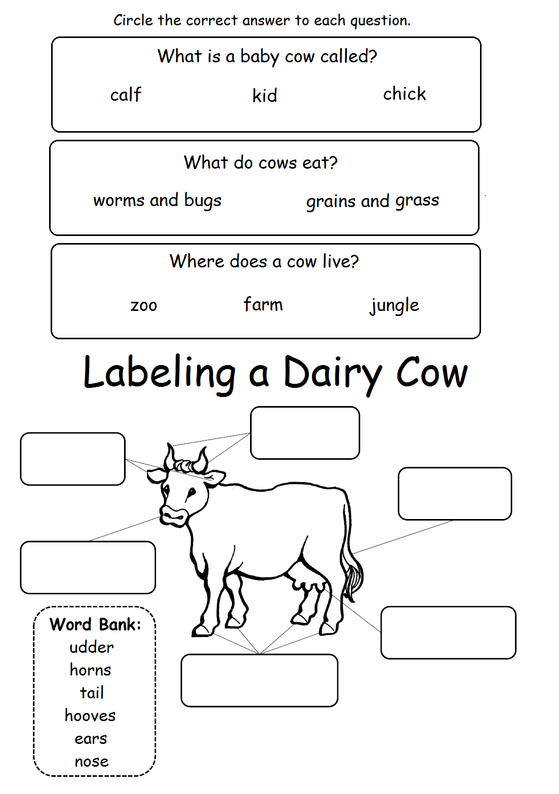Label Cow And Cow Facts Worksheet