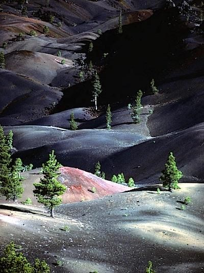 Ash and cinder fields at Lassen Volcanic Park show the slow recovery of the…