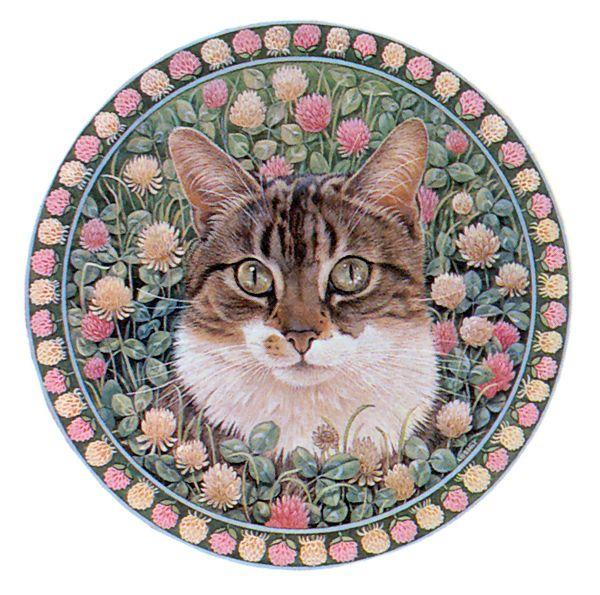 очистка поверхности картинки кошек в кругах день влюбленных картинки