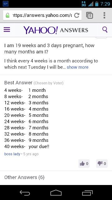 Weeks and months of pregnancy