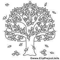 Eiche Ausmalbild Gratis Baum Im Herbst Malvorlagen
