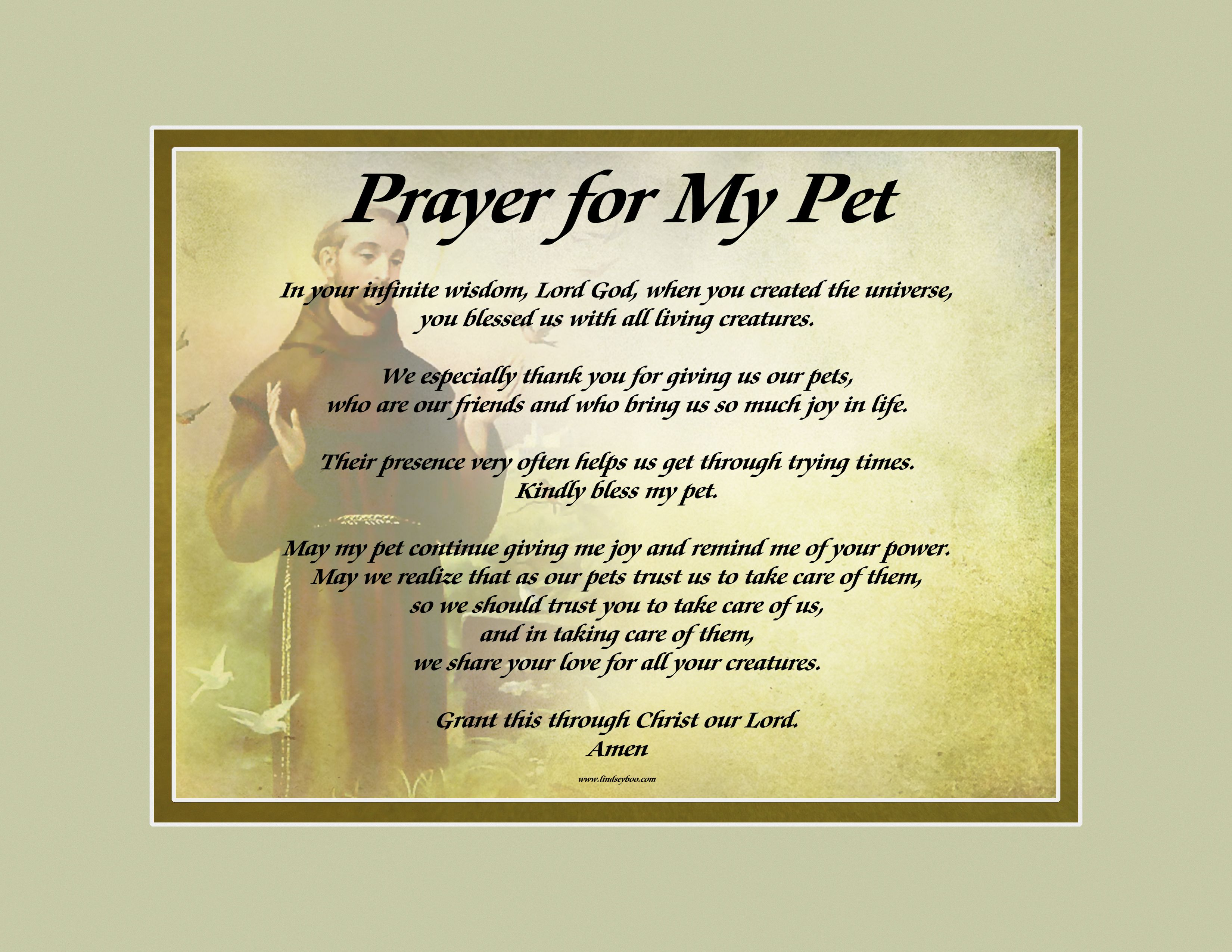 "Our ""St. Francis"" background, shown with Prayer for my Pet"