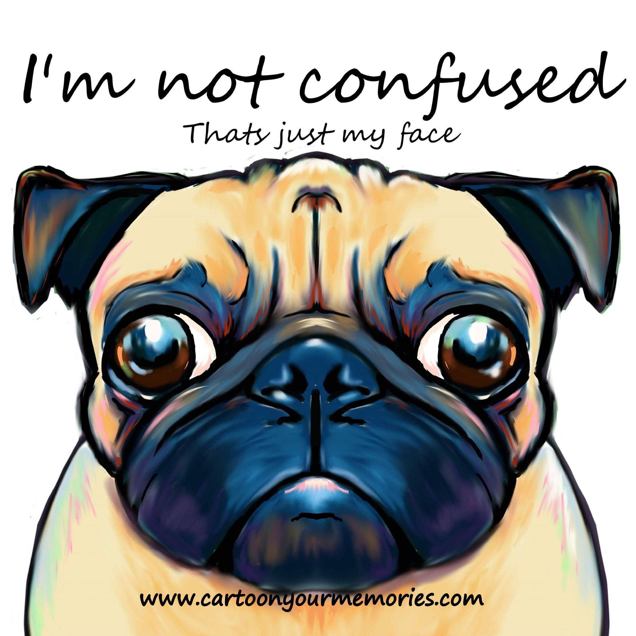 I M Not Confused Pug Art Pug Cartoon Cute Pugs