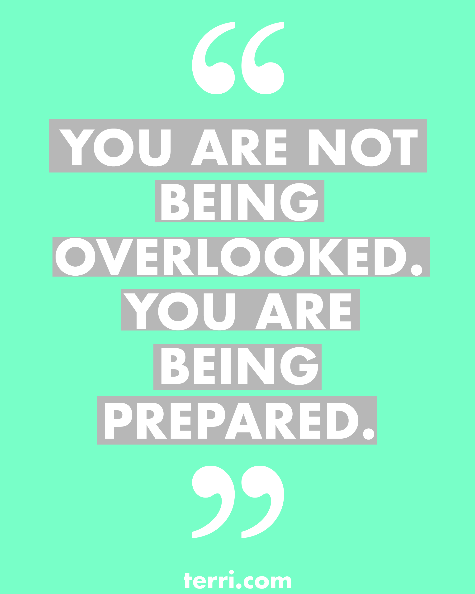 You Are Not Being Overlooked You Are Being Prepared For More