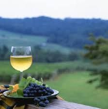 After you've hit the vineyards, stop by the Rouge Spa for a facial or massage. This is how Virginians relax!