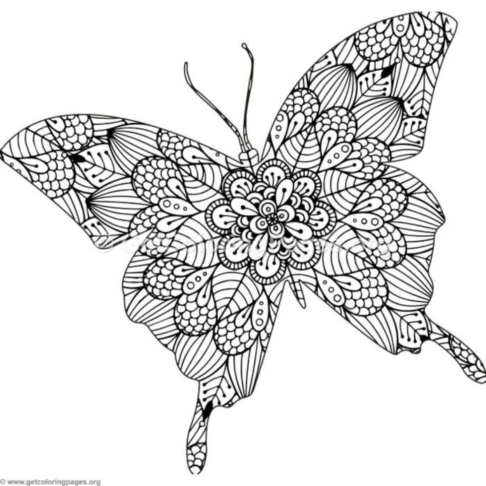 Pin By Saby On Butterflies Butterflies Butterfly Coloring Page Coloring Pages Animal Coloring Books [ 980 x 980 Pixel ]