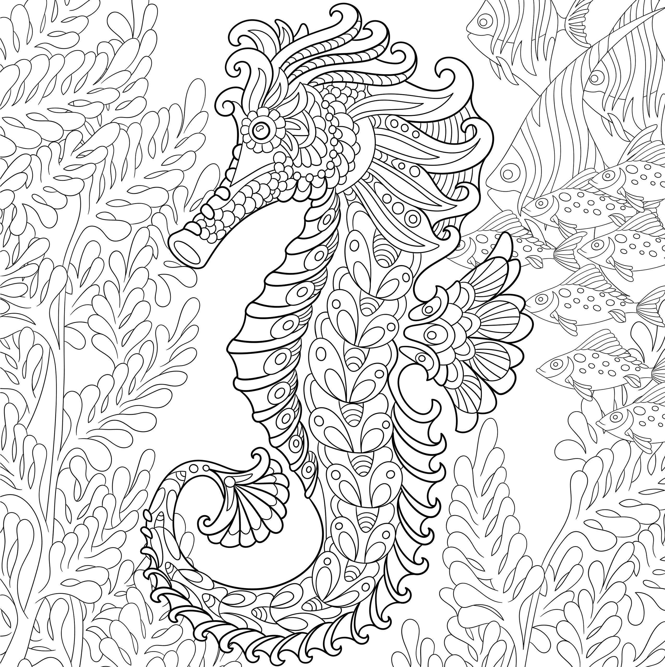 Coloring For Adults Undersea World Decorative Ornamental Picture Ausmalbilder Kostenlose Ausmalbilder Malbuch Vorlagen